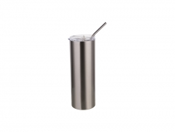 20oz/600ml Stainless Steel Skinny Tumbler with Straw & Lid (Silver)